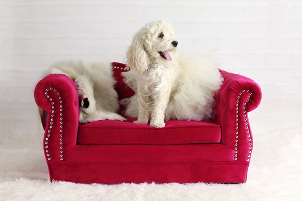 Yorkshire Pet Bed - Hot Pink