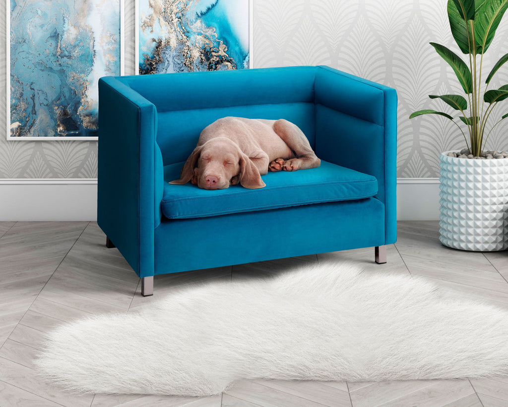 Beagle Pet Bed - Blue