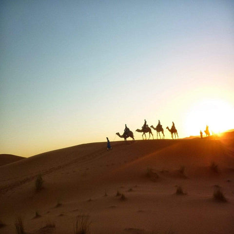 Sahara Desert - 3 Days/2 Nights - MaraTrek