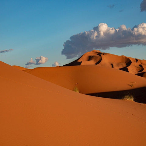 Sahara Desert - 4 Days/3 Nights - MaraTrek