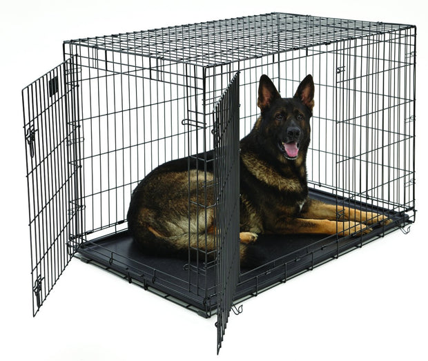 XL Dog Crate | MidWest Life Stages Double Door Folding Metal Dog Crate | Divider Panel, Floor Protecting Feet, Leak-Proof Dog Tray | 48L x 30W x 33H Inches, XL Dog Breed