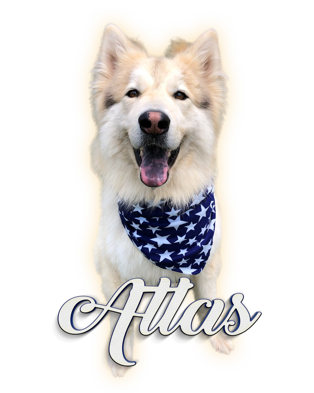Help For Atlas and His Mom