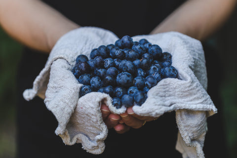 blueberries in a cloth in a person's hand