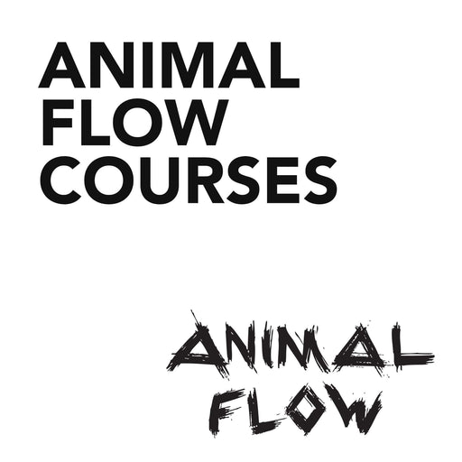Education Animal Flow Courses