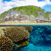 Niue Island 23rd-31st July 2021