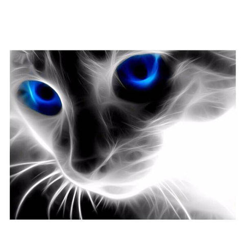 Image of 5D Cat - PhenomHouse