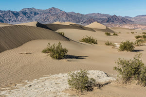 020 Death Valley 1