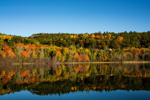 Autumn lake | Fall Colours | Killarney Provincial Park