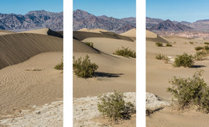 900 020 Death Valley 1