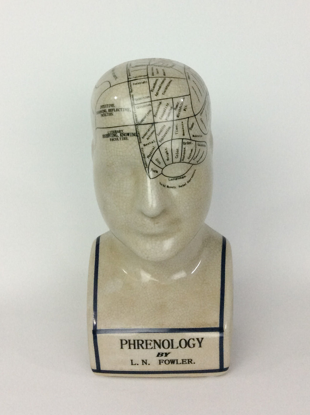 Small Phrenology Head