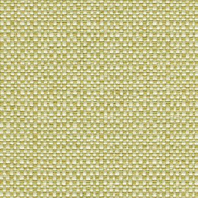 ENTHUSIASM PEAR Upholstery Fabric by Kravet