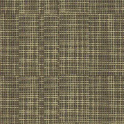 Delancy Shadow Upholstery Fabric by Kravet