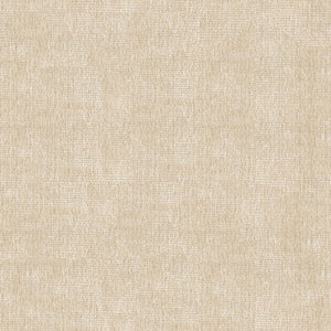 Kravet Smart 34191-116 Upholstery Fabric by Kravet