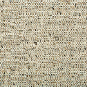 Kravet Smart 34616-1611 Upholstery Fabric by Kravet