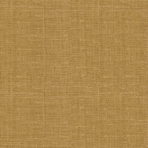 Leisure Chino Upholstery Fabric by Kravet