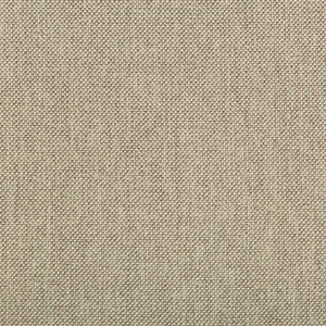 Williams Limestone Upholstery Fabric by Kravet