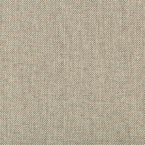 Williams Pumice  Upholstery Fabric by Kravet