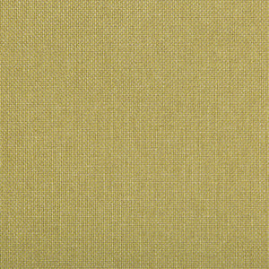 Williams Lemongrass Upholstery Fabric by Kravet