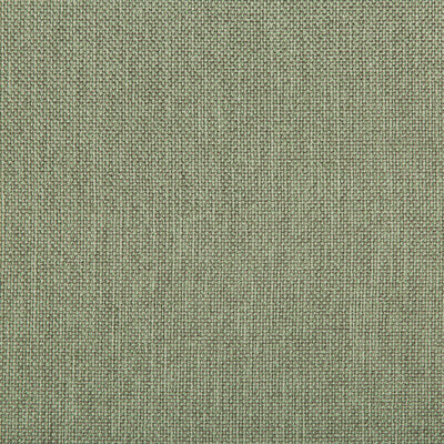 Williams Spearmint Upholstery Fabric by Kravet