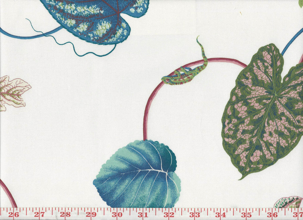 Creeping Vine CL Off White Drapery Fabric by P Kaufmann