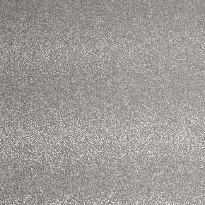Everglade CL Silver Indoor Outdoor Upholstery Fabric by Bella Dura