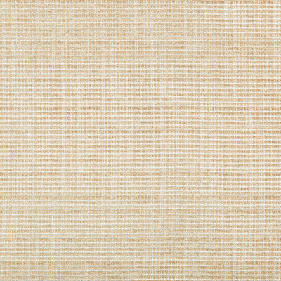 Saddlebrook CL Sand Upholstery Fabric by Kravet