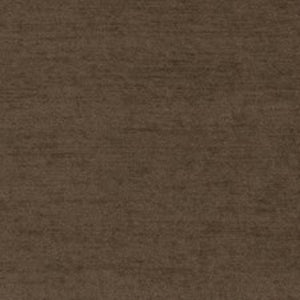 Amazonia CL Java Velvet Outdoor Upholstery Fabric by Ralph Lauren