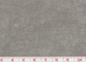 Juno CL Ash Grey Velvet Upholstery Fabric by JF Fabrics
