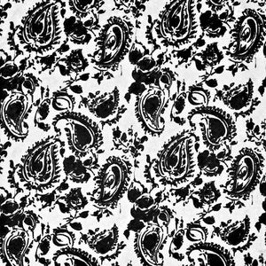 Catalina Paisley CL Onyx Drapery Upholstery Fabric by Ralph Lauren