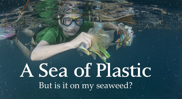 A sea of plastic: Is plastic on my seaweed?