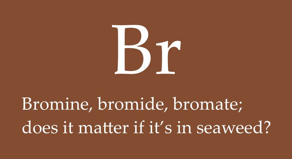 Bromine, bromide, bromate; does it matter if it's in seaweed? | Maine Coast Sea Vegetables