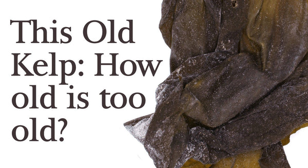This old kelp… how old is too old? Can seaweed expire?