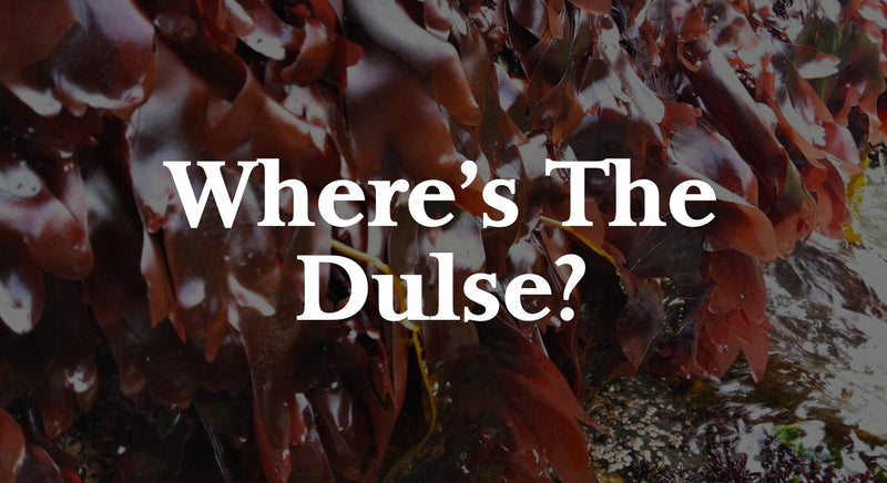 Where's The Dulse? | Maine Coast Sea Vegetables