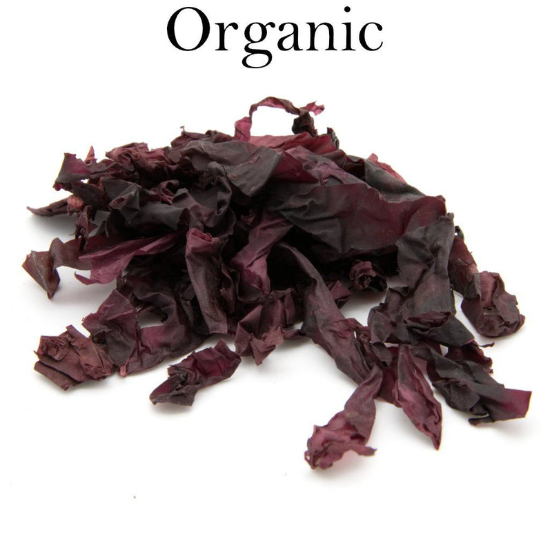 Dulse Whole Leaf - Wild Atlantic - Organic 1 LB - Maine Coast Sea Vegetables