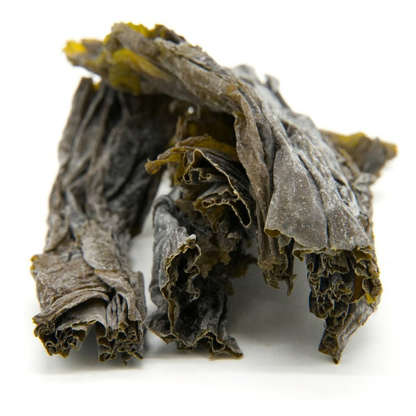 Kelp (Sugar) Whole Leaf - Wild Atlantic Kombu - Organic SAMPLE - Maine Coast Sea Vegetables