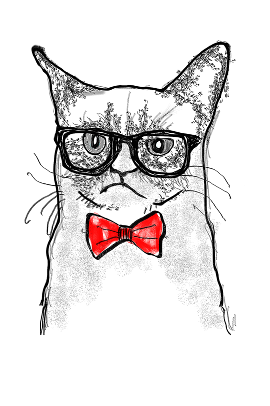 Grumpy Cat Kid T-Shirt art