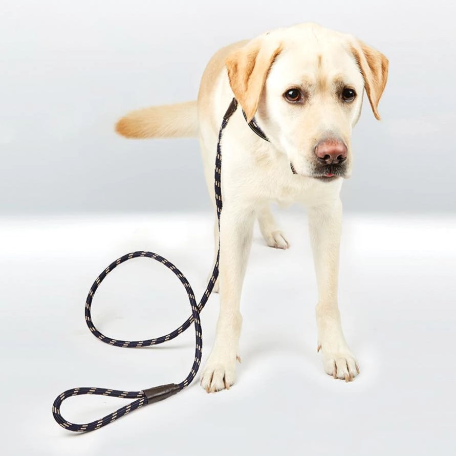 Weatherbeeta - Rope Leather Dog Lead