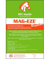 NPC Mag-Eze Regular
