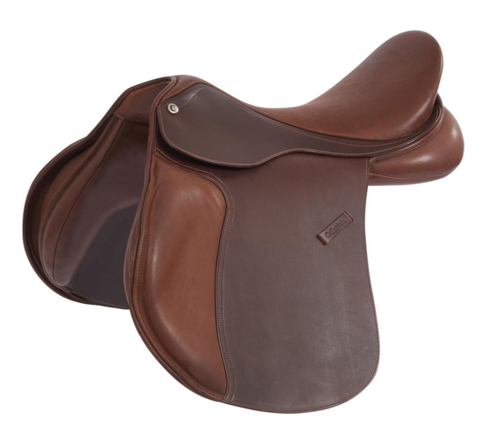Collegiate - Scholar All Purpose Saddle