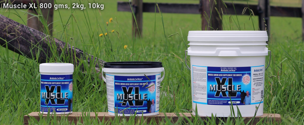 Kohnke's Own - Muscle XL - 1kg