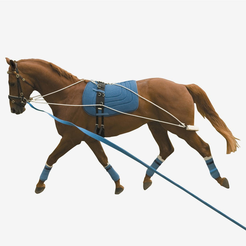 Kincade - Lunging Training System