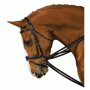 Kincade - Web Draw Reins - Full