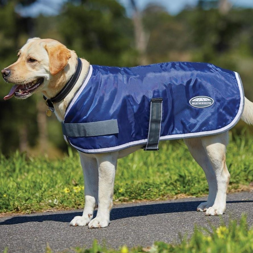 Weatherbeeta - Windbreaker Dog Coat - Navy