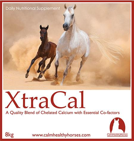 Calm Healthy XtraCal