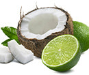 Coco Candle Co - coconut shell candles - Coconut Lime