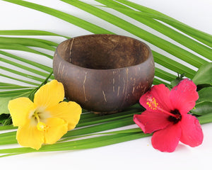 Coco Candle Co - jumbo sized coconut bowl in tropical setting