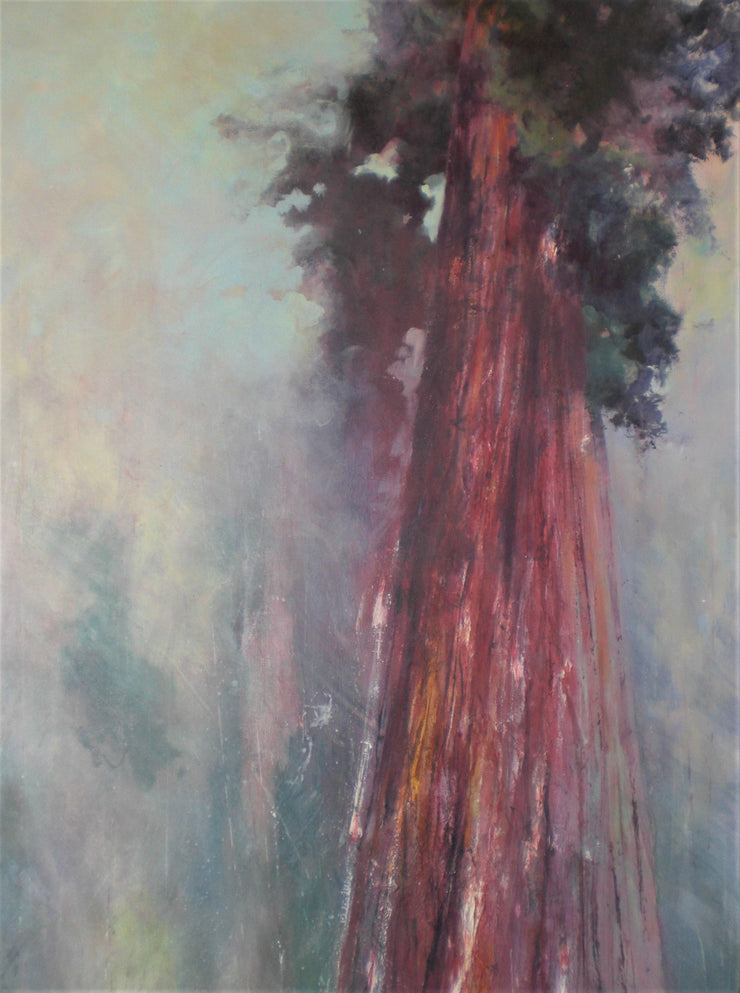Painting of a Redwood tree by Esther Shaw