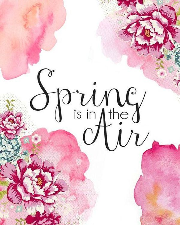 Spring Is In The Air!