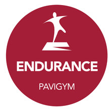 Load image into Gallery viewer, Pavigym Endurance