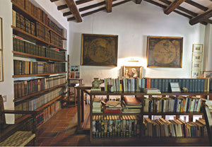 libreria cartina travi legno